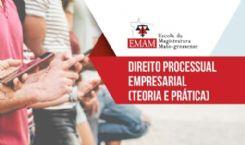 Direito Processual Empresarial (teoria e pratica)